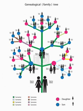 vector illustration with a picture of the genealogical family tree
