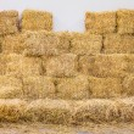 Rice straw bales in storage...