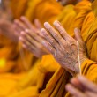 Buddhist monks chanting focus on one hand...