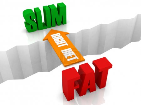 Right diet is the bridge from FAT to SLIM. Concept 3D illustration.