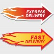 Express and Fast Delivery symbols. Vector illustra...