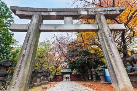 Toshogu Shrine under maintainance at Ueno Park in Tokyo