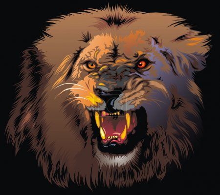 Illustration for Ferocious lion in the jungle on the black background - Royalty Free Image