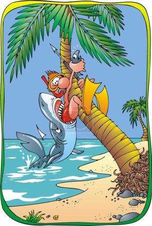 shark- danger on the beach