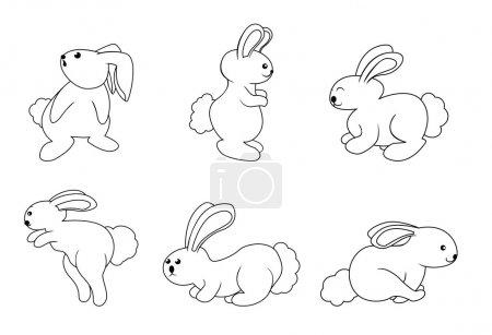 Vector illustration of rabbit set