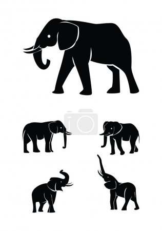 Vector illustration of elephant set silhouette