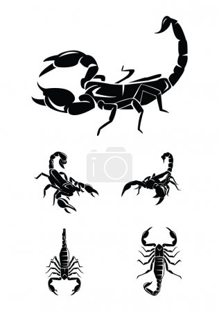 Illustration for Black and white vector illustration of Scorpion Collection Set - Royalty Free Image