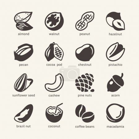 16 Nuts - web icons collection