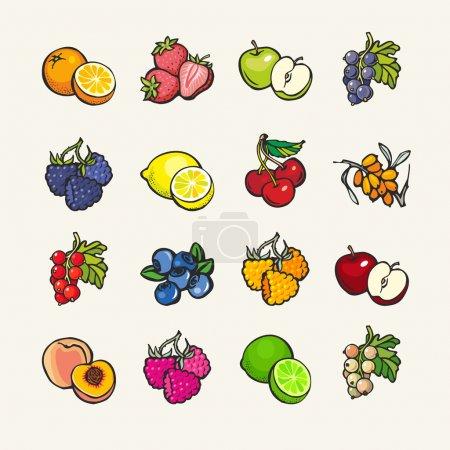 Illustration pour Ensemble d'icônes vectorielles de dessin animé - fruits et baies - image libre de droit