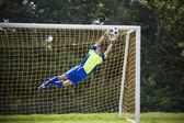Soccer goalie