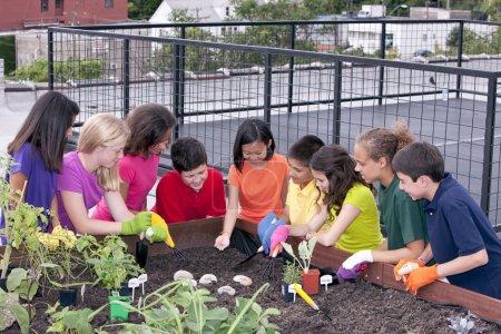 Group of ethnically diverse children planting urban rooftop garden