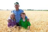 Grandfather farmer stands with grandchildren in wheat field