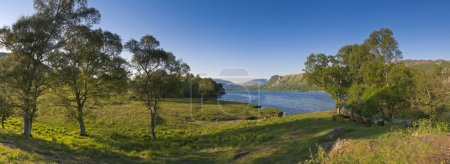 Photo for Summer woodland at Derwent Water with dramatic Latrigg mountain backdrop in the beautiful English Lake District. Stitched panoramic image detailed when viewed large. - Royalty Free Image