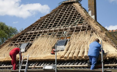 Workmen thatching a new roof