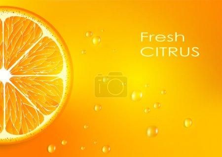 Illustration for Orange background - Royalty Free Image