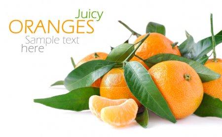 Photo pour Orange juteuse isolé sur fond blanc et exemple de texte - image libre de droit