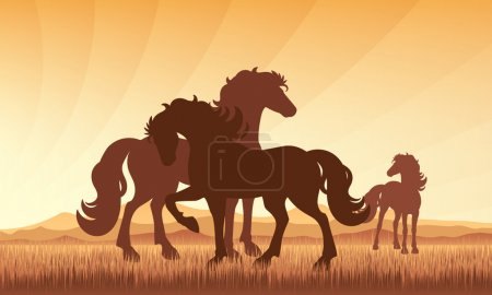 Horses in field on sunset background vector silhouette illustrat