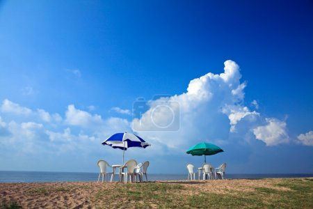 Parasols at the beach