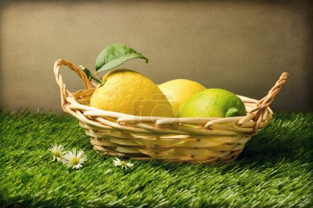 Photo for Fresh lemons in basket on grass - Royalty Free Image