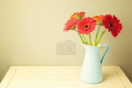 Gerbera daisy flowers