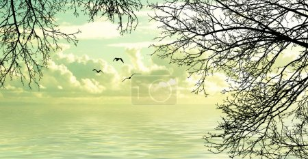Photo for Flying birds. Beautiful landscape - Royalty Free Image