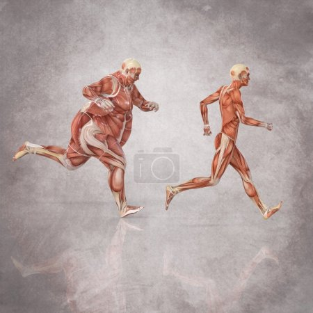Running Human Body