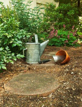 Waiting to Begin Gardening