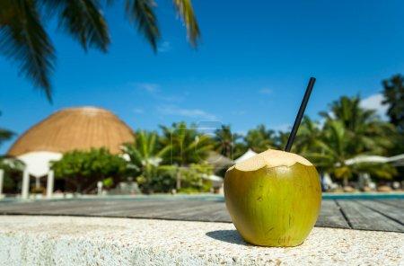 Photo pour Cocktail de noix de coco sur la plage - image libre de droit