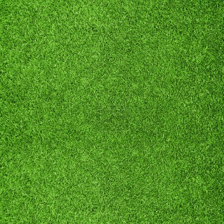 Photo for Beautiful green grass texture from golf course - Royalty Free Image