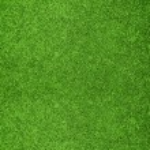 Beautiful green grass texture from golf course...