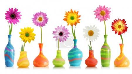 Photo pour Fleurs de marguerite colorées dans des vases lumineux isolés sur blanc - image libre de droit