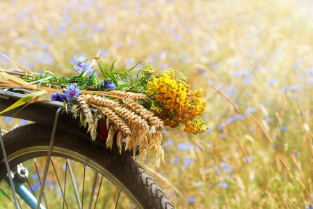 Photo for A boquet of summer wildflowers and wheat on a bike and summer field background - Royalty Free Image