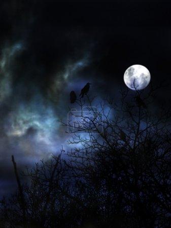 Spooky night with black birds.