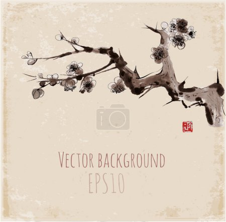 Illustration for Sakura blossom. Seasonal cherry blossom hand-drawn with ink in traditional Japanese style sumi-e. Sealed with decorative red stamp. Vector illustration. - Royalty Free Image