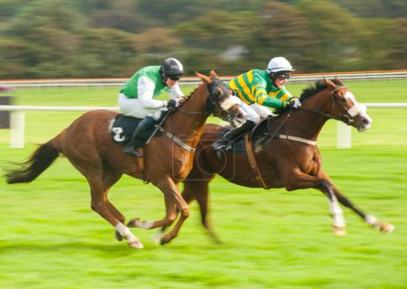 Photo for Horses running on the race track - Royalty Free Image