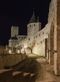 Carcassonne medieval castle