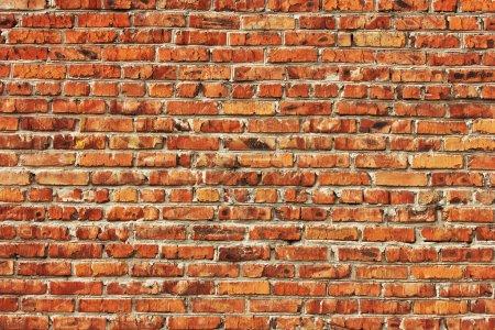 Photo pour Fond de mur de brique rouge - image libre de droit