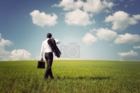 Photo for Businessman in a suit with a briefcase walking on a spacious green field with a blue sky - Royalty Free Image