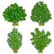A set of green vector shrubs...