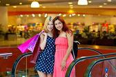 Dva přátelé žena v nákupní centrum