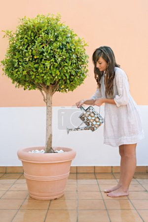 Woman watering a tree plant