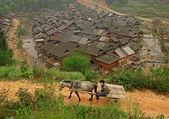 Kůň tahání vozíku s farmář, čínské vesnice v pozadí