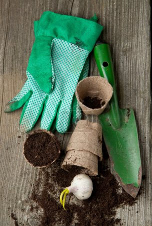 Garden tools with ground