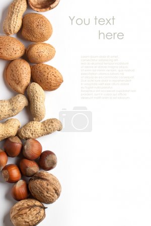 Photo for Background with assorted nuts almond, hazelnut, walnut and peanut onver white with sample text - Royalty Free Image