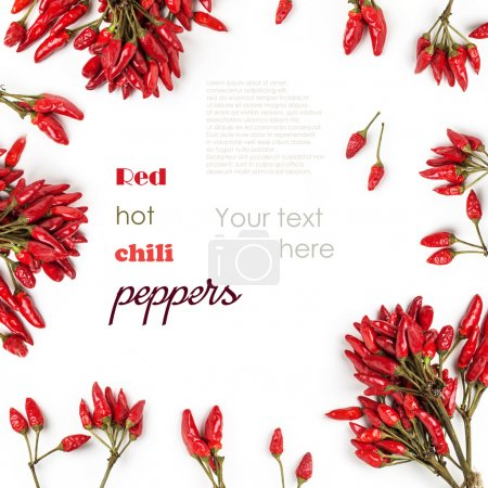 Photo for Background with bunch of red hot chili peppers isolated over white with sample text - Royalty Free Image