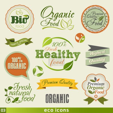 Vintage Organic Food icon set.Vector