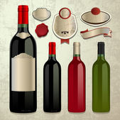 Bottle of wine and labels vector