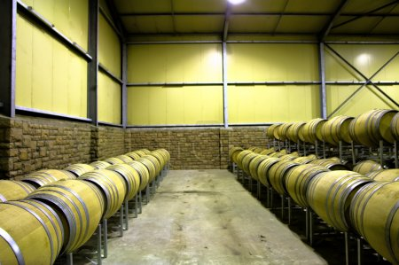 Rows of barrels in wine storage room