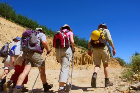Group of five elderly hikers walks on road