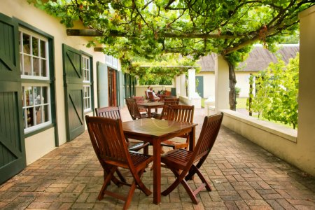 Tables on terrace covered by grape vine